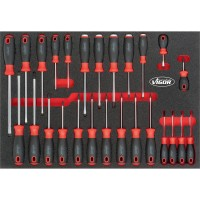 Screwdriver set for VW and AUDI